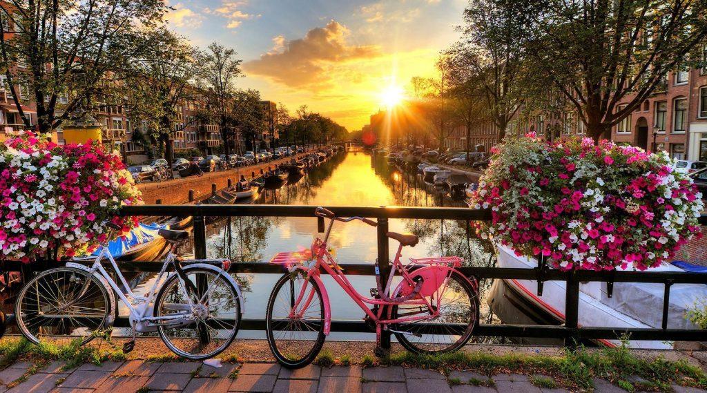 Image result for parada florilor amsterdam